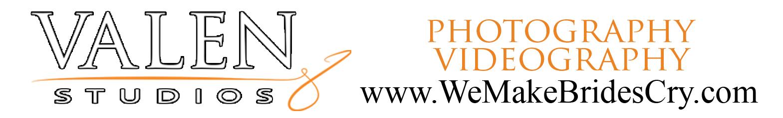 logo VALEN logo small size